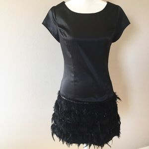Little Black Dress with Feathers